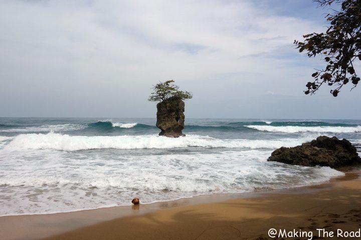costa rica punta uva manzanillo plage