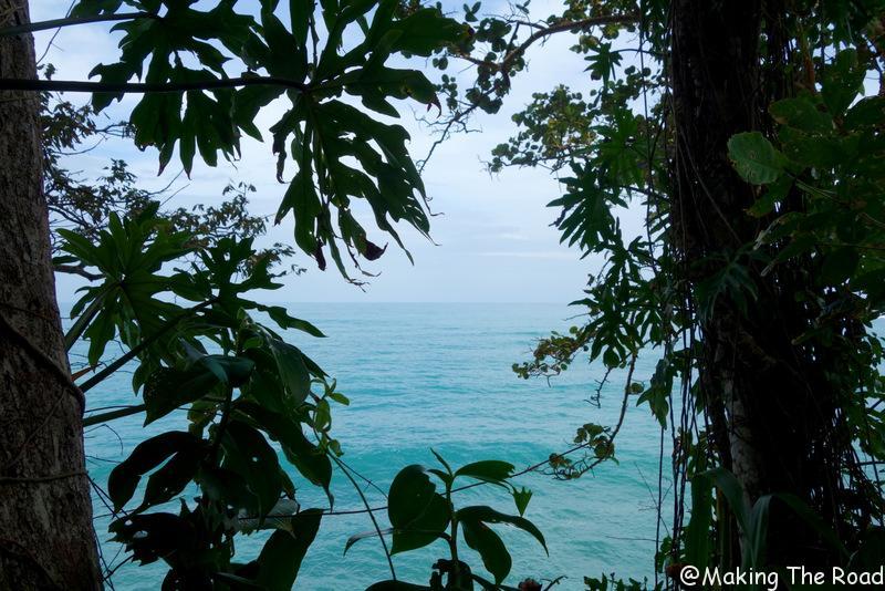 costa rica punta uva manzanillo road trip